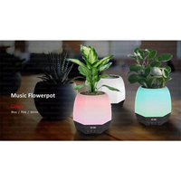 Factory Directly Supply Music Flowerpot Bluetooth