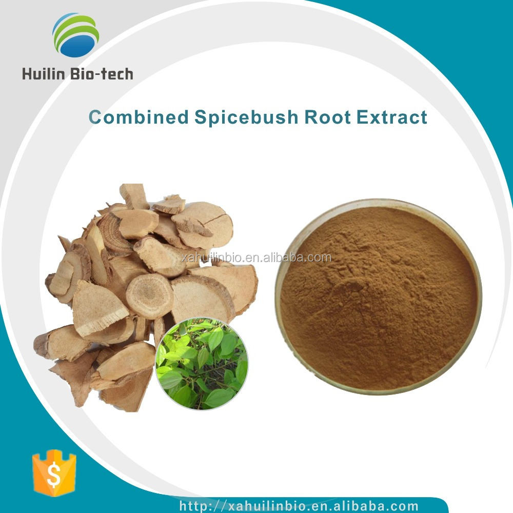 Free Sample 10:1, Combined Spicebush Root P.E./Combined Spicebush Root Extract Powder