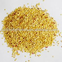 1st grade yellow chili seeds 25kg pp bag CHILI SEEDS