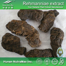 Free sample Rehmannia tuber extract/Cooked Rehmannia extract/Rehmannia glutinosa extract plant extract