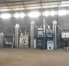 Grain Sesame Maize Seed Cleaning Plant / Wheat Paddy Processing Line