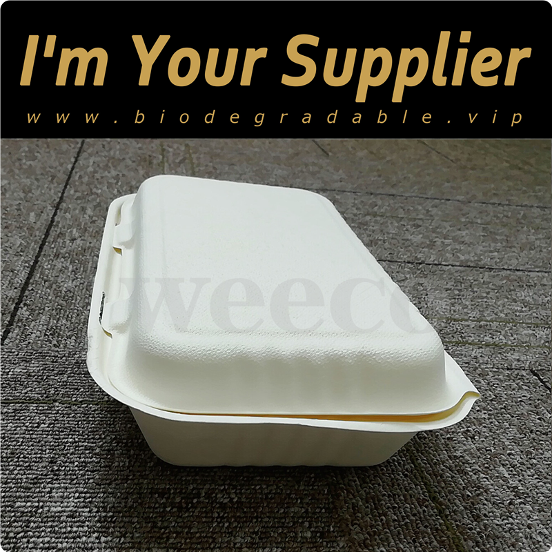 Factory eco-friendly food carrying biodegradable clamshell container