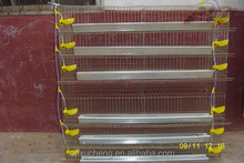 Manufacture laying cage for quail made in china