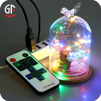 Wholesale China Colorful String Lights Kits Usb Power With Remote