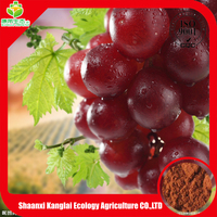 wholesale grape seed extract/OPC supplier/95% procyanidine powder