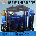 Customized 375kVA 300kw wood fire generator for sale