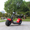 60V20AH 1500W 60km/h Long Range High Clambing Property Adult Electric Motorcycle