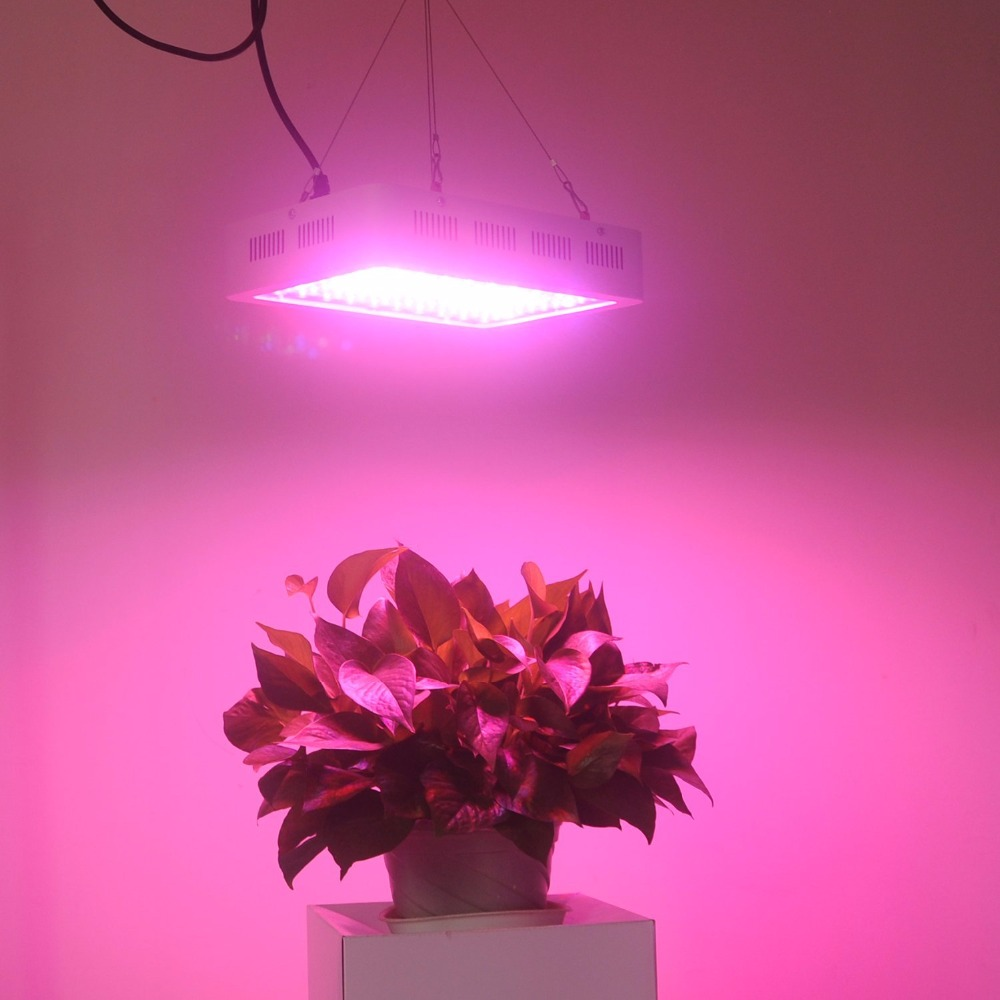 LED Grow Light 1000W Full Spectrum Indoor Lights For Medicinal Plants Veg&Flower in Greenhouse Tent Plant