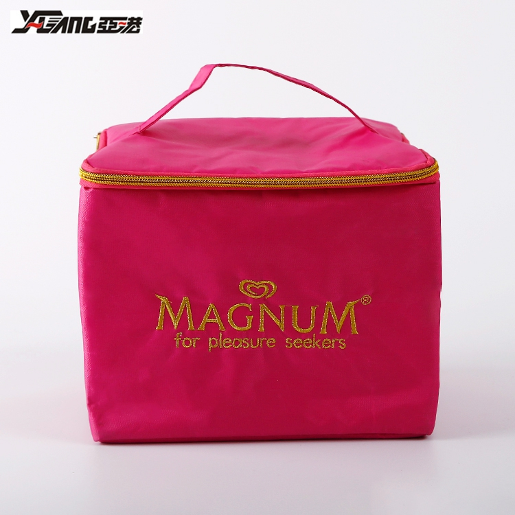 Custom Wholesale Eco-friendly Picnic cool carry cooler bag