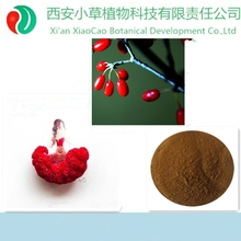 40 years experice dogwood p.e.,Asiatic cornelian cherry fruit P.E.,organic Fructus Corni Extract Powder