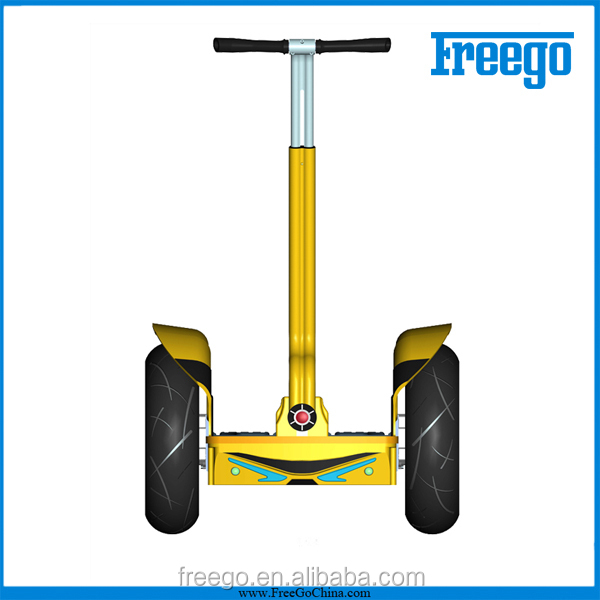 Freego 2 Wheel Stand Up Electric Scooter 2 Wheel Self Balancing Electric Vehicle Mobility Chariot Electric Snow Scooter