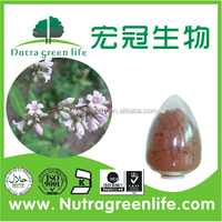 Alfalfa extract/powder/alfalfa seed/alfalfa hay for sale