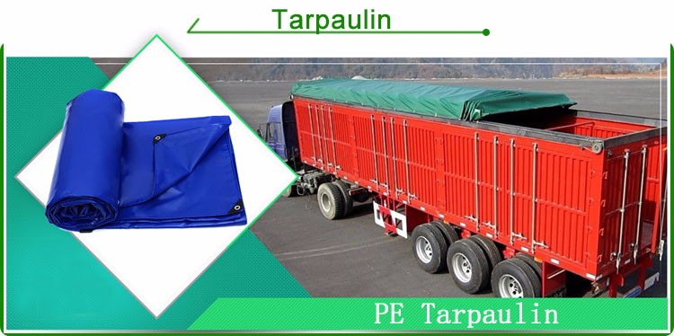 Customize size pe tarpaulin from China top rank tarpaulin factory with fast delivery