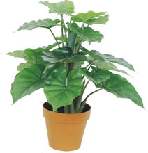 new product on sale indoor & outdoor artificial fake green bonsai tree plant made in China on sale
