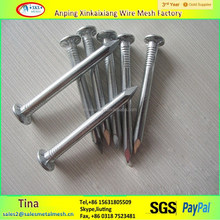Long life bright polished concrete nails,Galvanized steel nails,black nails