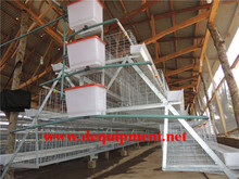 Factory automatic food processing large scale chicken farms for bv 380
