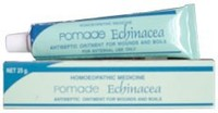 SBL Homeopathy -Echinacea Ointment - 25g