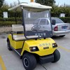 2 seaters electric off road golf carts sale