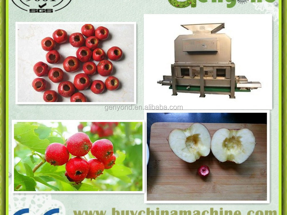 Date Core fruit seed removing machine