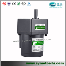 110v/220v, electric AC micro gear motor