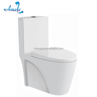 Bathroom hot sale sanitary ware siphonic and washdownceramic black colored toilet