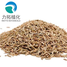 Organic Fennel Extract/Fennel Extract powder/common fennel extract powder with best quality