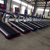 Sports Amp Entertainment Equipment Body Building