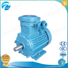 Explosion-proof Vertical Mount Electric Motor differential