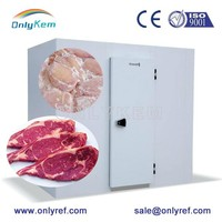 meat/ chicken/ beef cold room cold store