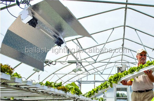 Chinese Factory 600W 1000W Simple Wing Double-ended DE HID HPS Grow Light Reflector