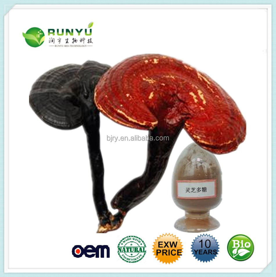 Health food Anti-cancer Glossy Ganoderma,lucid ganoderma extract Ganolactone
