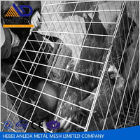 (rabbit,chicken,poult,bird )animal cages welded wire mesh cages with galvanized wire