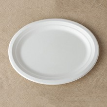 recyclable bagasse disposable fast food service trays 5 compartment America tray
