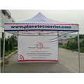 Customized printing different color pop up promotional tent canopy