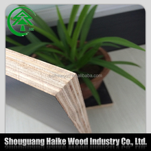 High quality hot sale export india construction plywood/construction film faced plywood