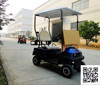 One person seats mini outdoor cheap electric golf cart with rain cover