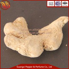 Factory supply whole dried ginger