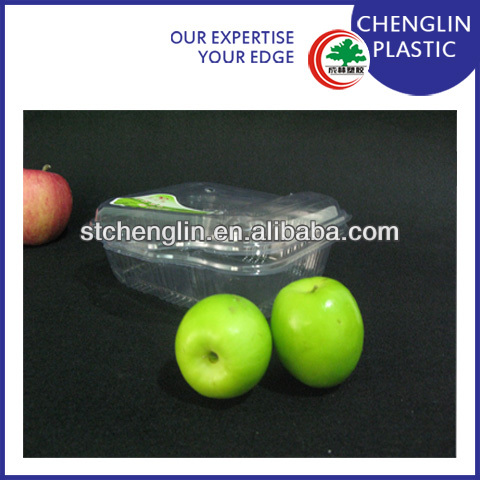 disposable plastic container fruit tray