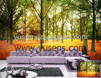 Factory Sell Photo Quality seamless Wide format printing DIY room wallpaper