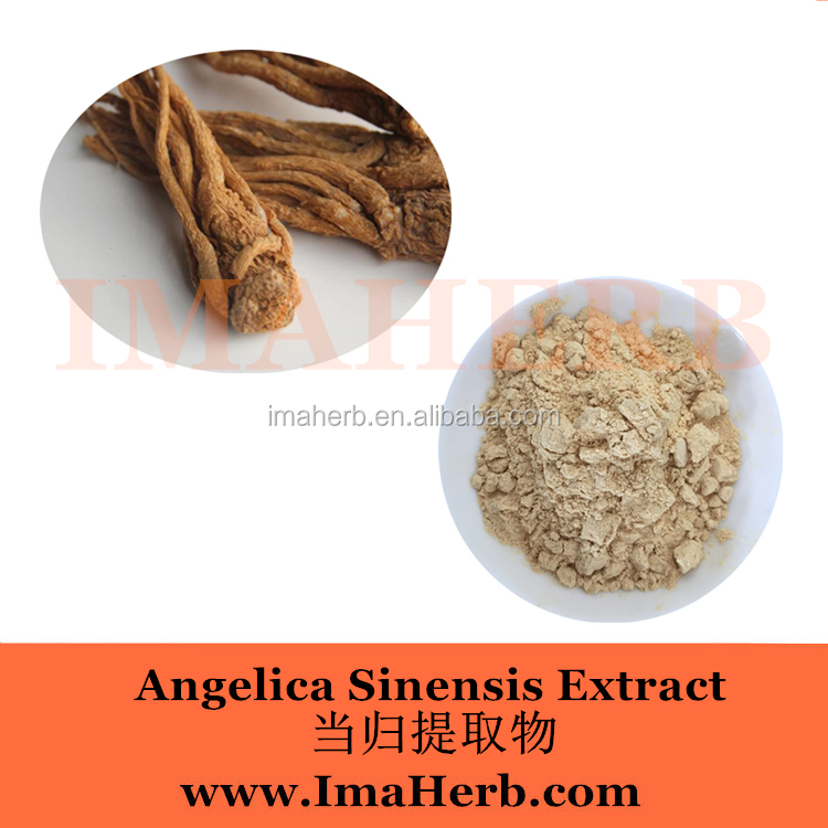 Top Grade Nature angelica sinensis extract in stock