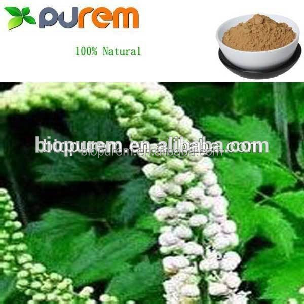 Black Cohosh Extract Powder, Triterpene Glycosides CAS: 84776-26-1