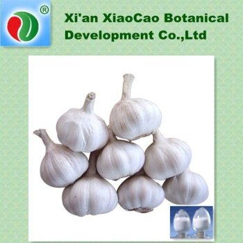 Supply Garlic P.E. Allicin Alliin