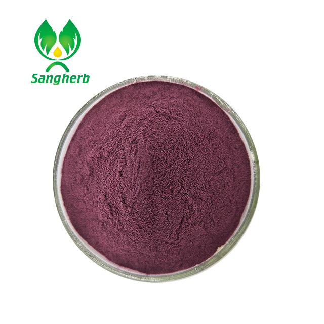Factory price acai berry organic freeze dry powder from China famous supplier