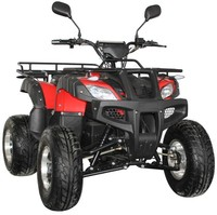 2019 New design 3000w electric quad atvs for adults