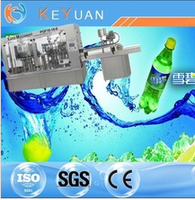 Automatic 3-in-1 Carbonated Beverage Filling Machine /Equipment/Line