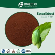 Hot Sell factory supply cocoa powder natural fat content 10%-12%
