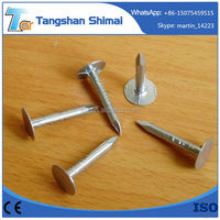 China flat head roofing nail, clout nail Bright flat caps galvanized roofing nails