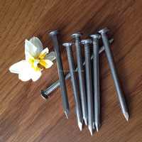 polished galvanized common nails/13.5cm cheap pure iron nails
