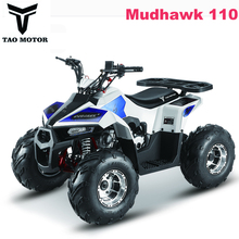Chinese Cheap KIds ATV for sale MudHawk 110cc
