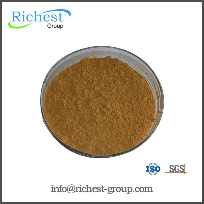 Samples Available Epimedium Brevicornum Extract for Tablets